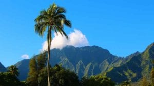 Why you should visit kauai today