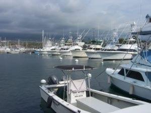 Harbor - The Big Island