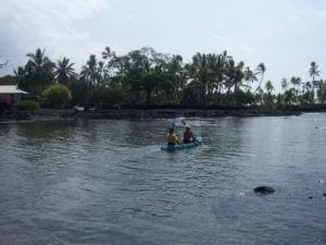 Kayak clients Hawaii Island Recovery