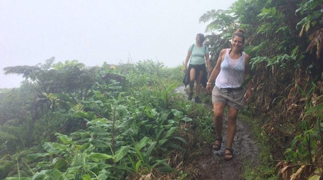 My experience at Hawaii Island Recovery has been an emotional rollercoaster ride