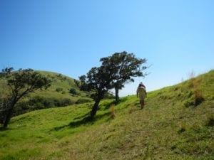 North Kohala Trip