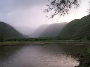 North Kohala nature