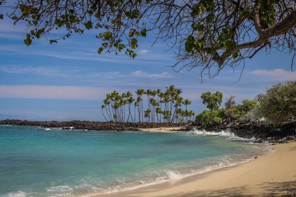Exploring Hawaii: The 5 Best Beaches on the Big Island