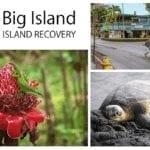 Christmas Eve at addiction treatment center | Hawaii Island Recovery