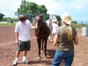 Equine Assisted Therapy | client holds the horse