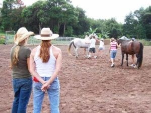 Equine Assisted Therapy at Hawaii Island Recovery