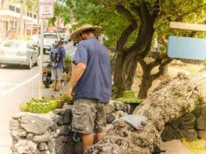 Life in Kailua Kona