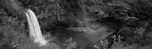 Waterfall in Hawaii | Hawaii Island Recovery