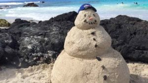Sandman in Hawaii