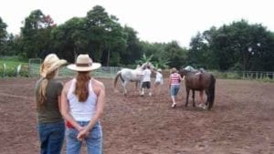Clients during the equine therapy