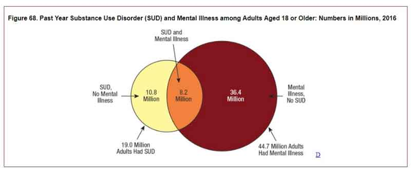 Substance Use Disorder and Mental Illness